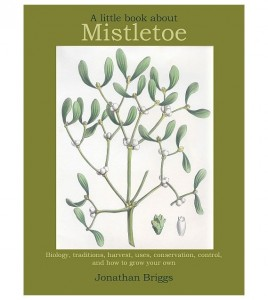 Little Book About Mistletoe - front cover