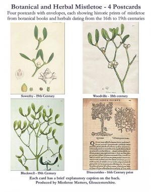 Botanical Mistletoe Postcard Set