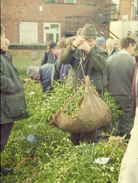 Mistletoe at the Tenbury Mistletoe Auctions