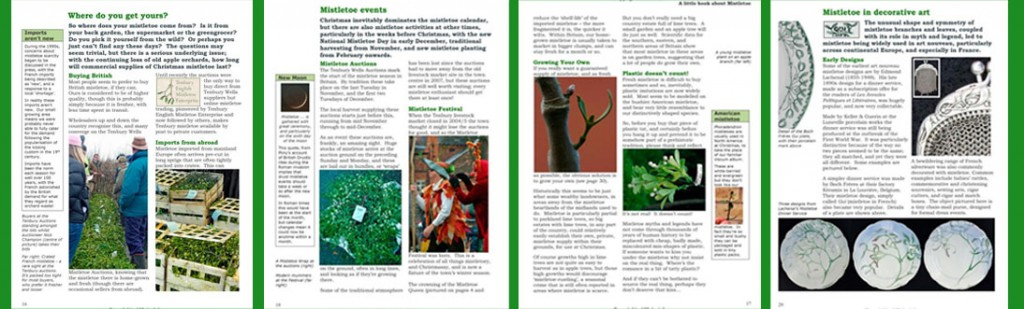 Sample pages from A Little Book About Mistletoe