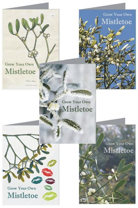 Grow Kit Gift Card Designs